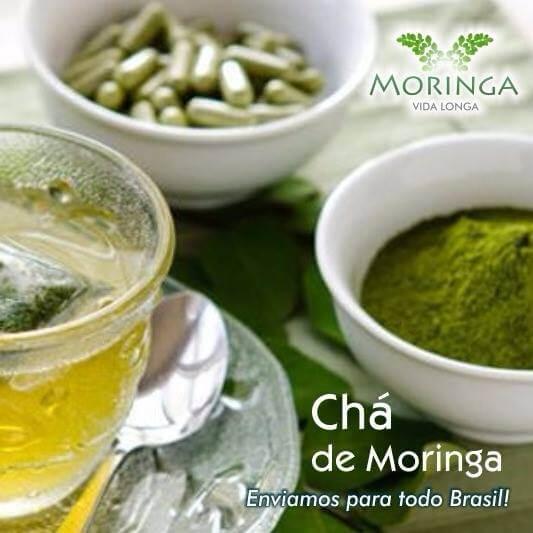 24 Benefícios Da Moringa Oleifera! O Que é a Moringa e Como Consumir